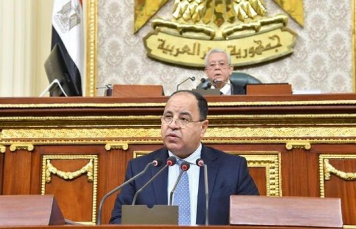 وزير المالية من البرلمان: تقارير المؤسسات الدولية أكدت تصنيف مصر الائتمانى رغم أزمة كورونا