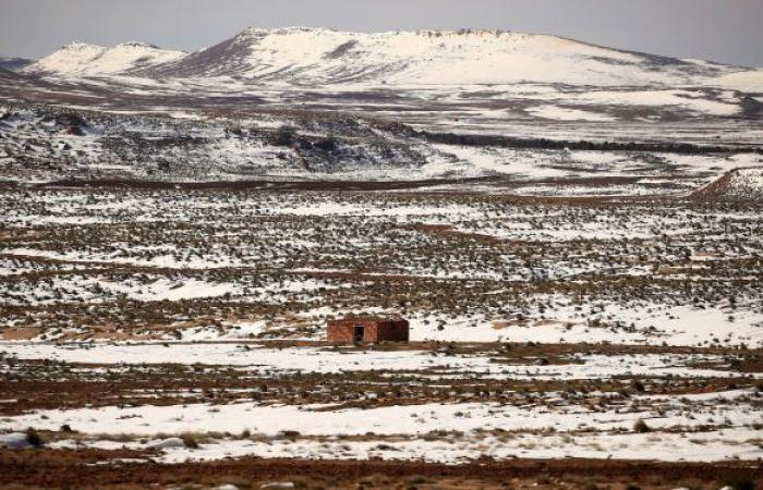 استمرار هبوب رياح قوية على 17 ولاية جزائرية