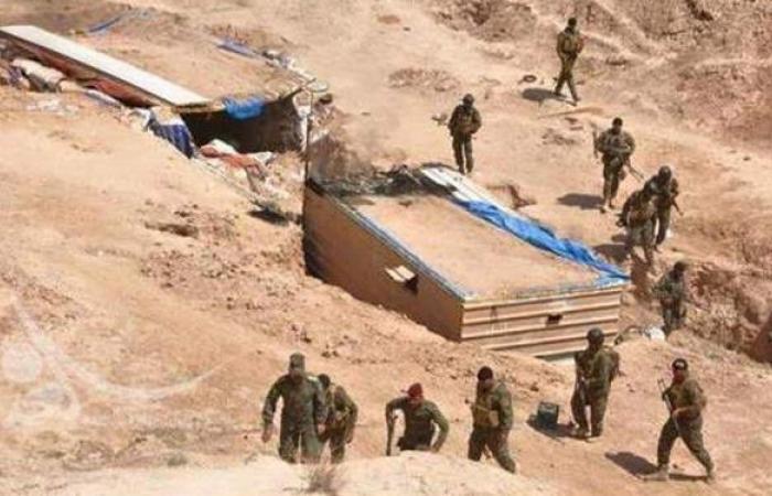 أسود الجزيرة.. عملية عراقية ضد داعش غربي البلاد