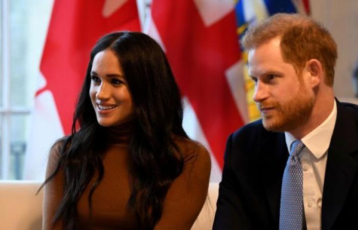"""الأمير هاري يكسب دعوى قضائية ضد صحيفة """"ديلي ميل"""""""