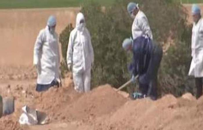 """""""معاً ضد كورونا"""" بأسوان: تغسيل ودفن 132 من ضحايا الفيروس"""