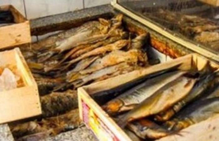 ضبط 4.5 طن أسماك مملحة فاسدة في الغربية