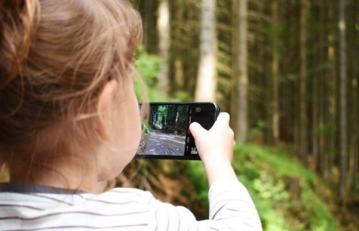 خبير يعلق على استخدام الهواتف الذكية في التعليم