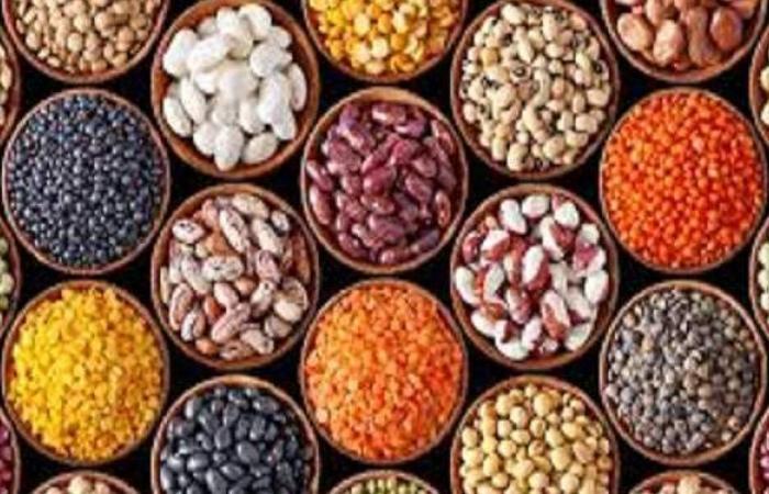 أسعار البقوليات اليوم الأربعاء 10-2-2021 في مصر