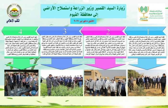 الزراعة × أسبوع.. تشكيل مجلس أمناء لمحطة الزهراء للخيول العربية