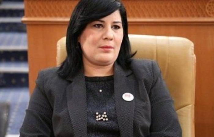 عبير موسي: لا ننتظر خيرا من الحكومة الجديدة.. والمجتمع المدني ضد حركة النهضة