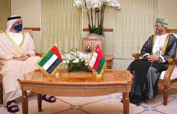 لقاء بين عبدالله بن زايد ووزير خارجية عمان.. هذا ما جاء فيه