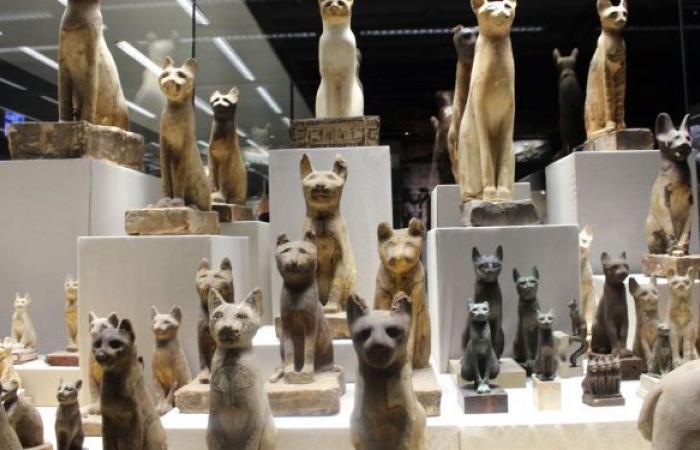 """آلاف القطع الأثرية توثق علاقة المصري القديم بالبيئة...""""سبوتنيك"""" في جولة داخل متحف شرم الشيخ"""