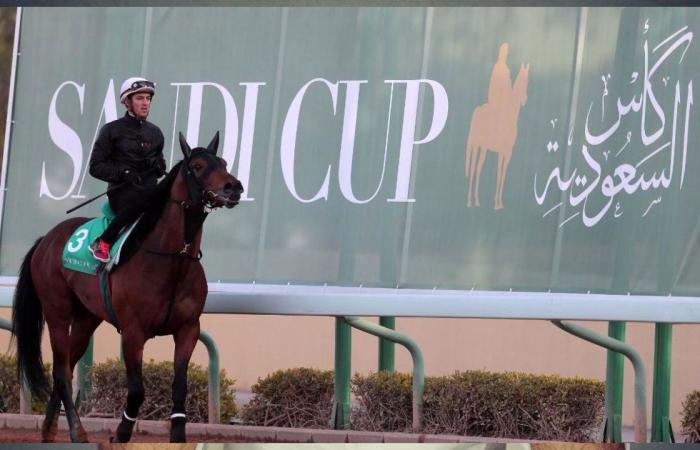 «كأس السعودية» صراع مثير بين نخبة الخيل والمدربين في العالم