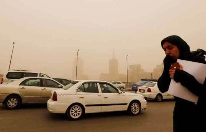 نصائح لمرضى الحساسية المصريين لمواجهة الطقس السيء... فيديو