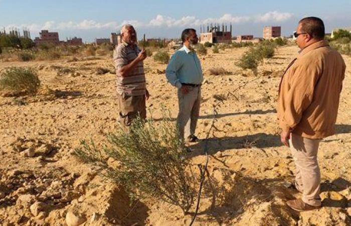 لمكافحة تقلبات الجو.. وزير الزراعة يكلف مركز الصحراء بتوفير الدعم الفني للمزارعين