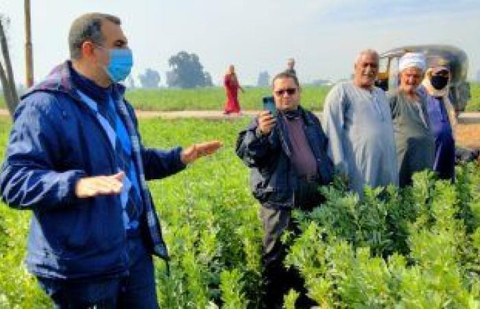 الزراعة تعلن تنفيذ 10 مدارس حقلية ارشادية لتوعية المزارعين فى 8 محافظات