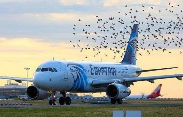 الوزن المسموح به على مصر للطيران وقيمة الإضافي