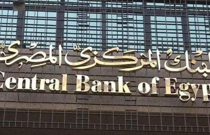 البنك المركزي: 213 مليار جنيه قروض للشركات الصغيرة والمتوسط | فيديو
