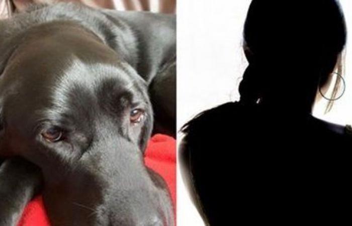 انهارت من البكاء.. كفيفة تتعرض لموقف مرعب بسبب كلبها