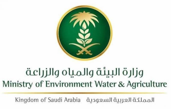 «البيئة والمياه والزراعة» تحفر 10 آبار أنبوبية بتكلفة 4 ملايين ريال لدعم مصادر المياه في عسير