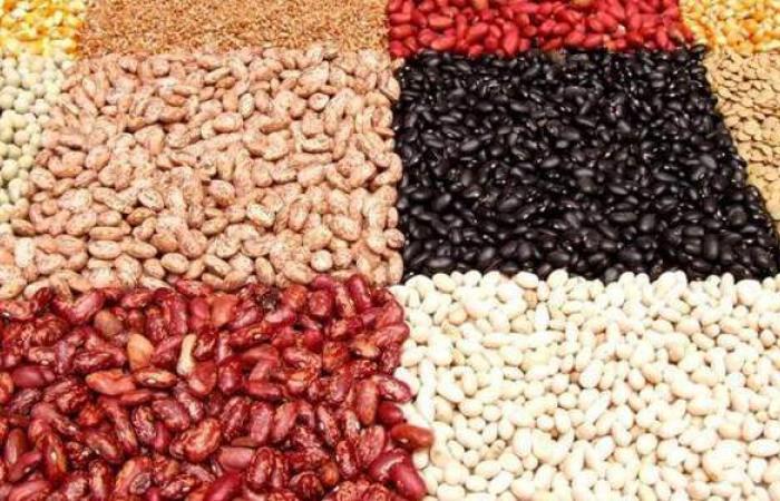 أسعار البقوليات اليوم الثلاثاء 23-2-2021 في الأسواق المصرية