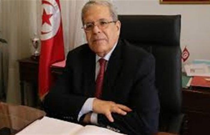 هاني رسلان : تضامن تونس مع مصر في ملف سد النهضة يعزز موقفها دوليا