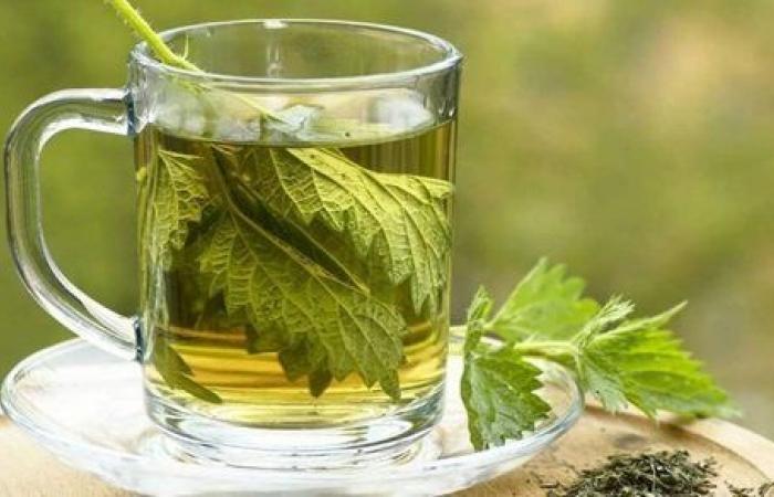 5 أعشاب لعلاج آلام القولون .. تعرف عليها