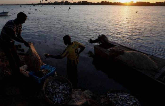 بعد انزلاق سيارتهم... النيل يبتلع 7 أشخاص في مصر