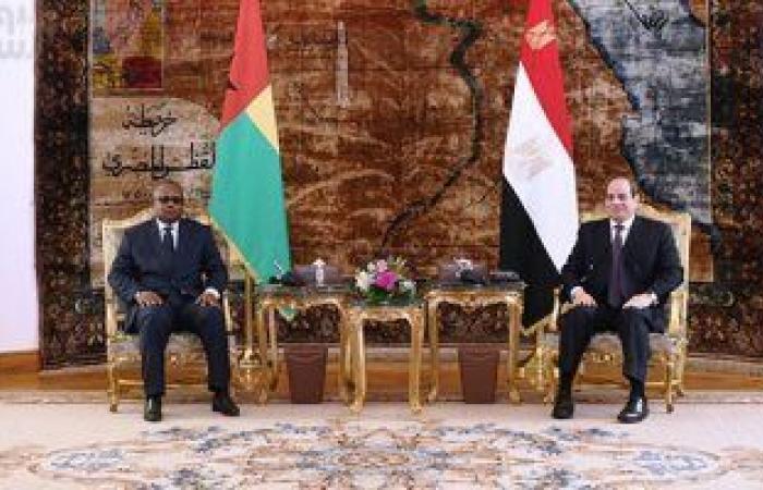 مساعد وزير الخارجية الأسبق يؤكد تقدير زعماء أفريقيا لجهود الرئيس السيسى تجاه القارة