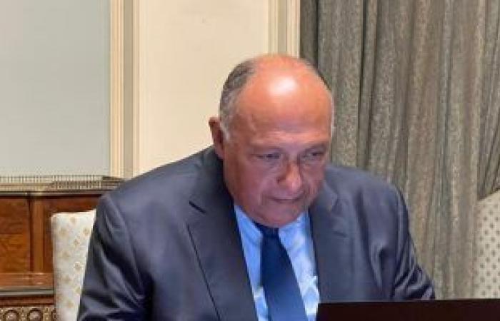 الخارجية تعرب عن بالغ الحزن والأسى لمقتل مواطن مصرى وإصابة آخر فى الرياض