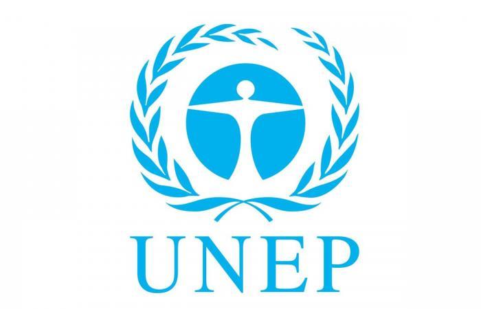 «الأمم المتحدة» تُشيد بتجربة السعودية فيما يتعلق بالهدر والفقد الغذائي