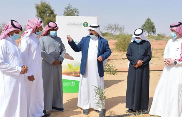 إطلاق المرحلة السابعة من حملة «أرض القصيم خضراء»