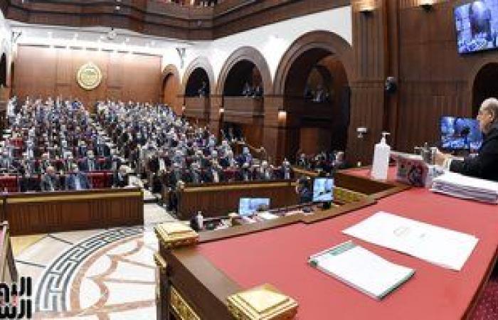 تشكيل اللجنة العامة بالشيوخ بعد انتخابات اللجان النوعية .. تعرف على التفاصيل