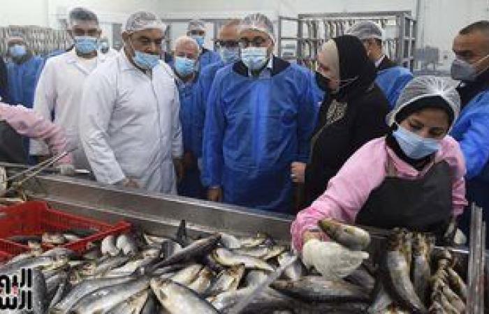 تعرف على أسعار الأسماك بسوق العبور اليوم