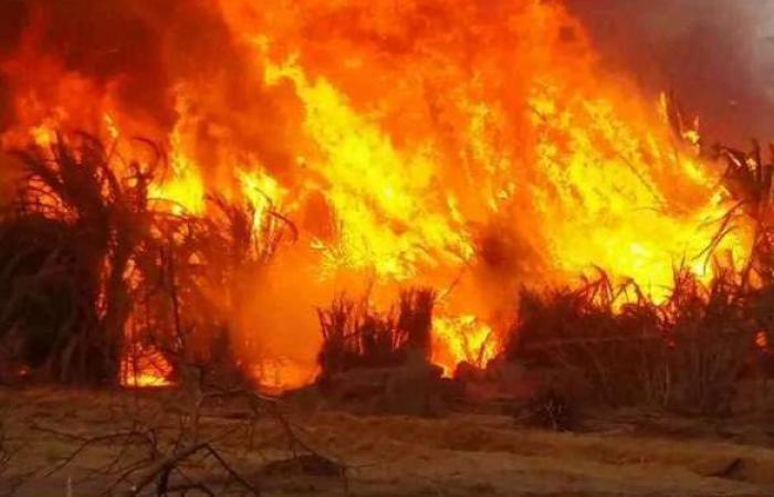 مصدر أمني يوضح حقيقة حريق أحد المحال التجارية في ميدان الدهار بالغردقة
