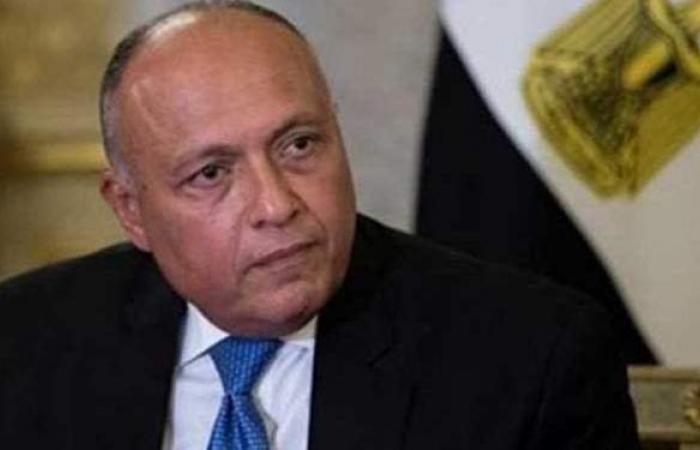 وزير الخارجية: ننسق مع السودان لاتخاذ الإجراءات التي تحفظ حقوقنا بشأن سد النهضة