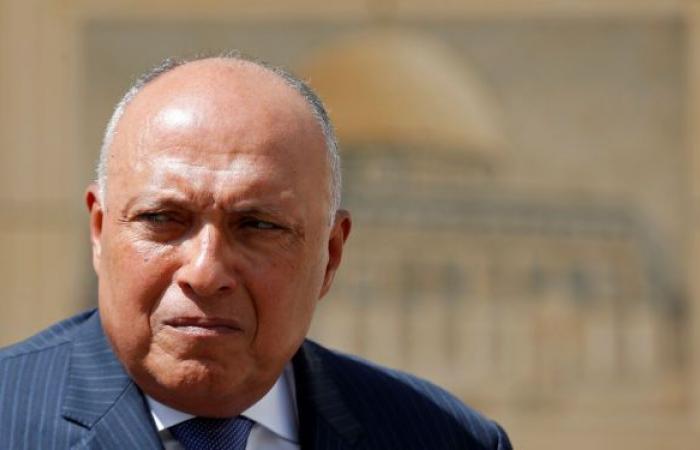 وزير الخارجية المصري يعلن عن خطوة جديدة بشأن أزمة سد النهضة
