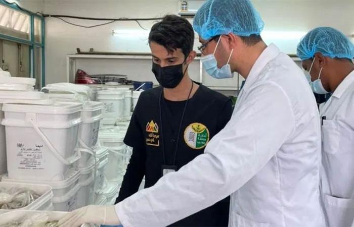 أمانة عسير تضبط 14 ألف كجم من الأغذية الفاسدة في مستودع