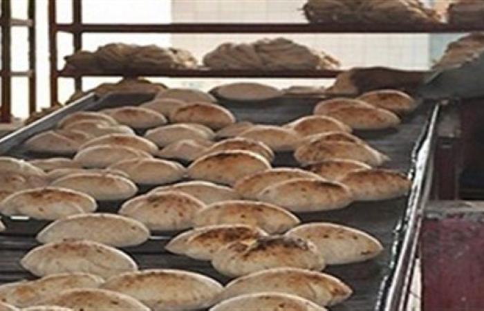 التموين: حملات تفتيشية للتأكد من توفر السلع والخبز للمواطنين في رمضان (فيديو)