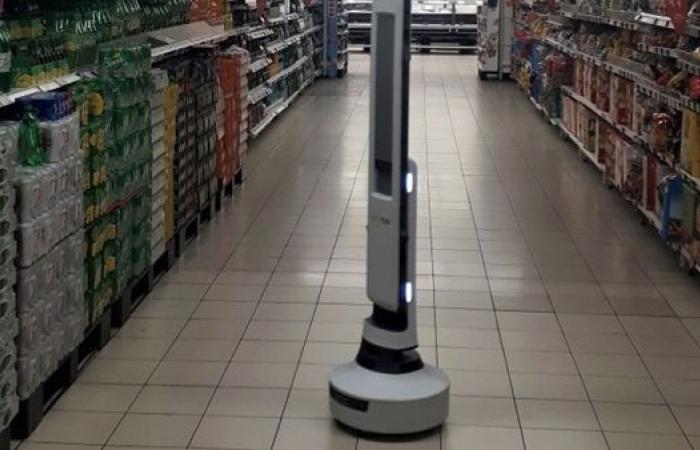 شاهد.. روبوت بقالة يساعد في حمل المشتريات