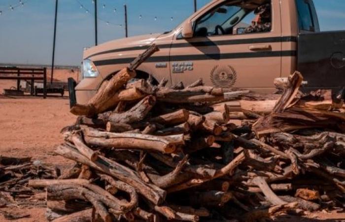 ضبط 32 مخالفًا لنظام البيئة بحوزتهم كمية من الحطب المحلي