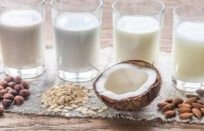 فوائد السوبيا فى رمضان.. تُقلل من الشعور بالعطش وتسهل عملية الهضم