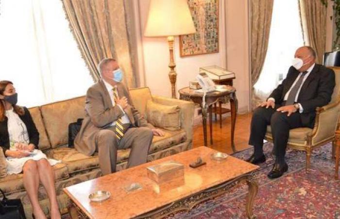 وزير الخارجية: مصر تسعى لوحدة ليبيا وخروج المرتزقة والمقاتلين الأجانب