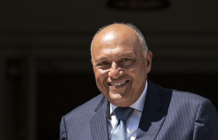 وزير الخارجية المصري يسلم الرئيس الكيني رسالة من السيسي