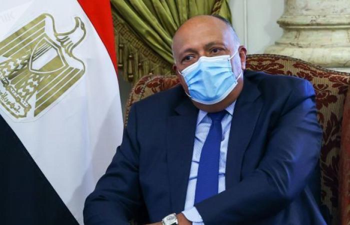 ما الذي يمكن أن تحققه الجولة الأفريقية لوزير خارجية مصر بشأن سد النهضة