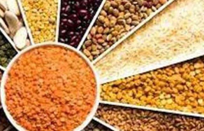 أسعار البقوليات اليوم الثلاثاء 20-4-2021 في الأسواق المصرية