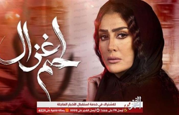 """ماء نار على وجه غادة عبد الرازق عقب زواجها من خالد كمال بـ""""لحم غزال"""""""