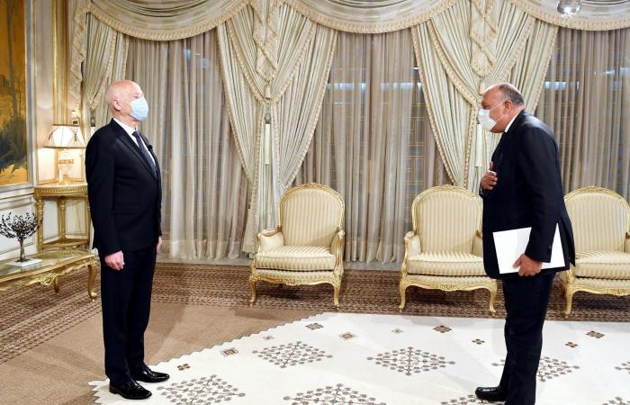 رئيس تونس: أمن مصر ركيزة أساسية للأمن العربى وانتصارات رمضان معجزة عسكرية