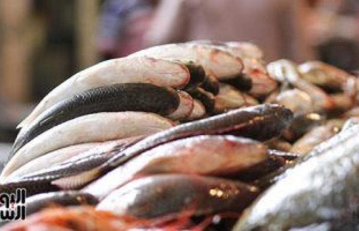 الإحصاء يكشف كيف ساهمت زيادة الإنتاج فى تراجع واردات مصر من الأسماك