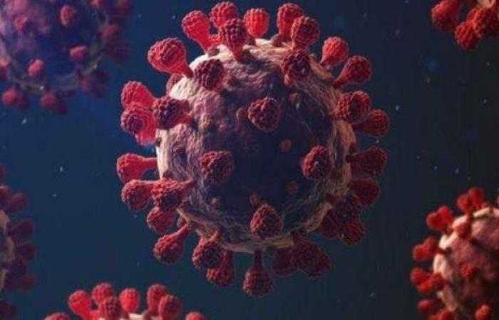تعافي 17 شخصا من مصابي كورونا بالقليوبية