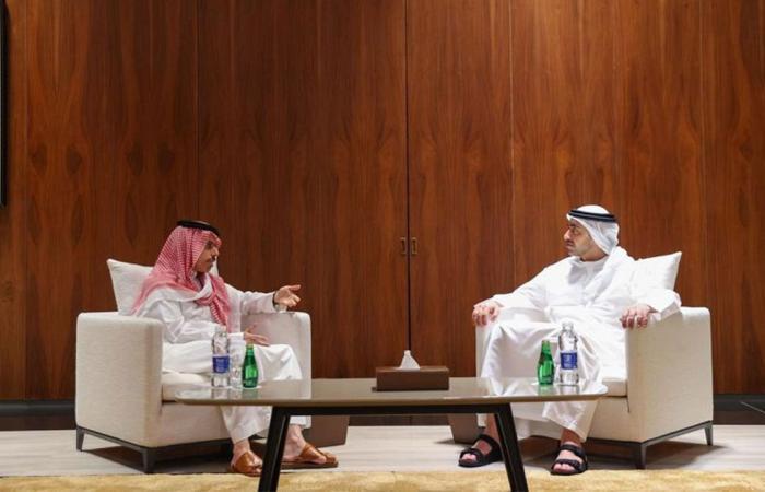 جلسة مباحثات رسمية بين الأمير فيصل بن فرحانووزير الخارجية الإماراتي