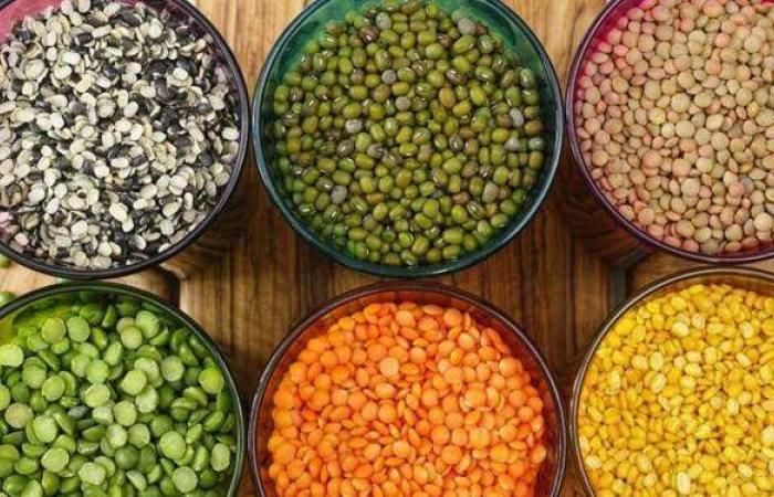 أسعار البقوليات اليوم الأحد 2-5-2021 في الأسواق المصرية
