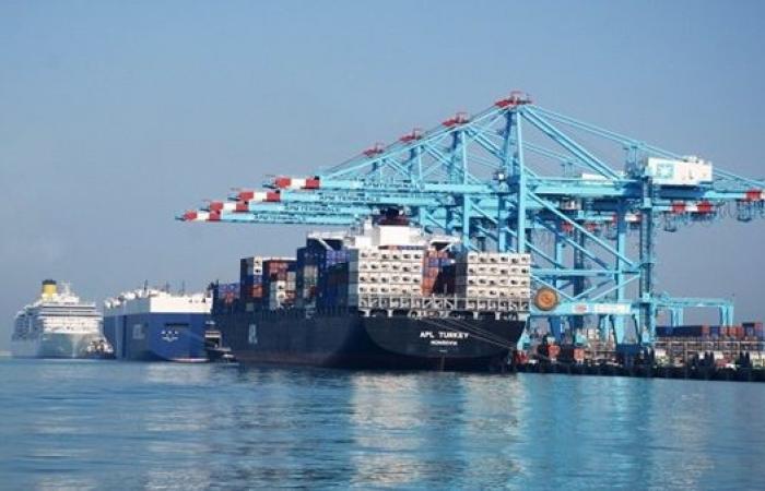 تداول 20 سفينة حاويات وبضائع عامة بموانئ بورسعيد