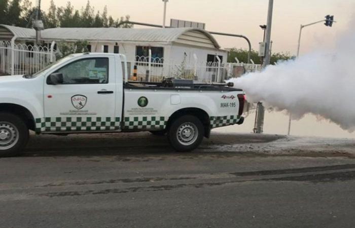 «البيئة»: رصد مستنقعات في مكة.. وتكثيف أعمال مكافحة نواقل الأمراض في العاصمة المقدسة